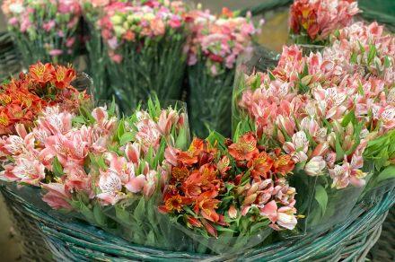 Mercado de Flores: crónica de una mañana entre aromas y colores