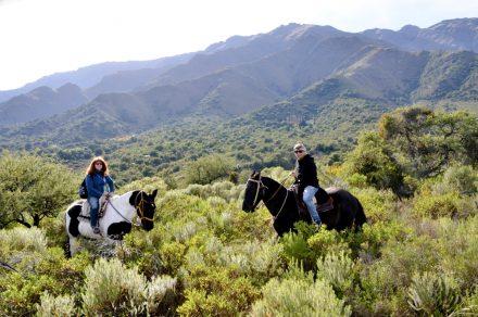 Merlo: microclima y esplendor de la naturaleza en San Luis