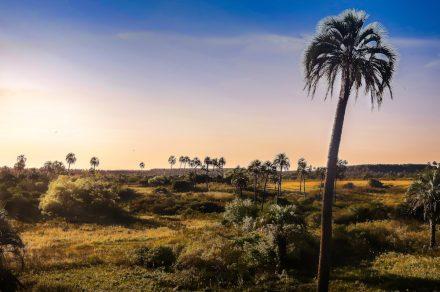 Entre Ríos. Los alrededores de Colón (y El Palmar) en bici
