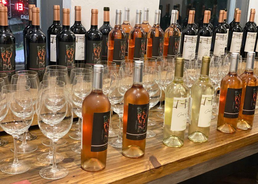 Corral de Palos presentó sus vinos puntanos en La Plata