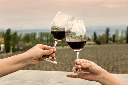 Winery Booking: reservar tu visita a la bodega en tres clicks